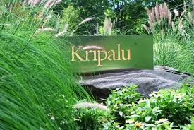 Q&A between Vinn and Ashley Winseck for Kripalu, Center for Yoga and Health